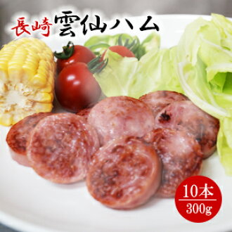/ for the assorted 300 g of Unzen ham gift sets *10 gift-giving expands; / auspicious decoration for gifts / domestic production / Nagasaki / snacks / dish
