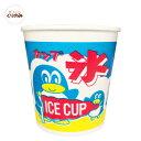 Koori cup1
