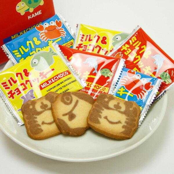 海のおみやげ ミルク&チョコクッキー 可愛いパッケージ