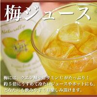 黒船屋の梅ジュース(500ml)ほのかな酸味と甘みで飲みやすいジュース♪うめジュース
