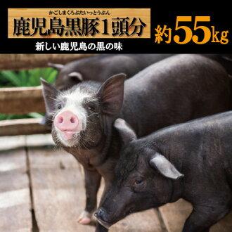 Kagoshima black pigs per head one minute pork