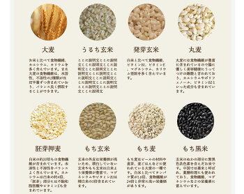 もがな栄養レトルトカレー単品管理栄養士監修完全栄養食品完全食