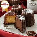 東京カヌレ バニラ味&生チョコ味 12個セット お歳暮 ギフト に 大人気 フランス 焼菓子 かわいい 猫 個包装 スイーツ