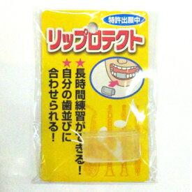 リップロテクト【ウインドお茶の水】