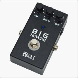 ZCAT Pedals Big Reverb TI Deep Reverb + Hold 《エフェクター/リバーブ/ホールド》【送料無料】【ご予約受付中】【ONLINE STORE】