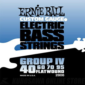 ERNIE BALL #2808 Flatwound Group IV Electric Bass Strings《ベース弦》【ネコポス】(ご予約受付中)【ONLINE STORE】