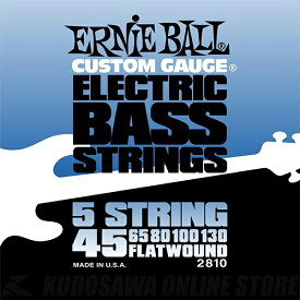 ERNIE BALL #2810 Flatwound 5-string Electric Bass Strings《ベース弦》【ネコポス】【ONLINE STORE】