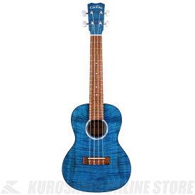 Cordoba 15CFM Sapphire Blue【コンサートウクレレ】【ONLINE STORE】