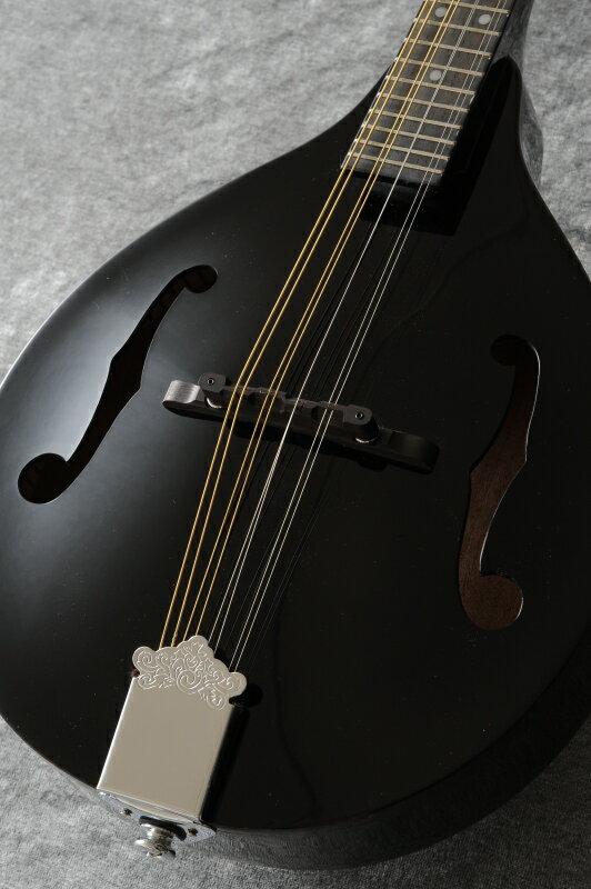 DEAN Tennessee A/E Mandolin (Classic Black)[TNAE CBK]【送料無料】【ONLINE STORE】