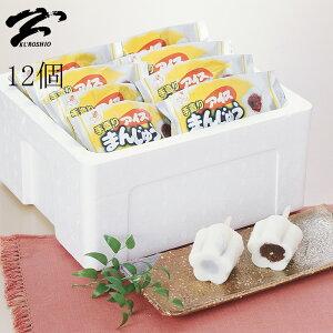 【送料コミコミ価格】 松永牛乳 懐かしさを感じる アイスまんじゅう12個入り ドライアイス発泡スチロール入りで安心♪同梱不可