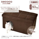 170607_necoco_cat_08