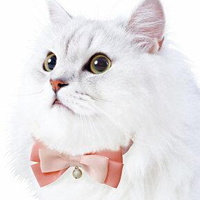 ペティオプレシャンテキャットカラーシュシュリボン(ピンク/パープル/レッド)【猫首輪(くびわ・カラー)/猫用首輪/Preciante】【猫用品/猫(ねこ・ネコ)/ペット・ペットグッズ/ペット用品】