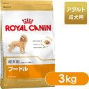 ロイヤルカナン ドッグフード BHN プードル 成犬用 10ヶ月以上 3kg 【ドッグフード ロイヤルカナン 犬/ドッグフード …