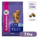 Eukanuba(ユーカヌバ)ドッグフード 子犬用 大型犬種(大粒) 7.5kg 【ユーカヌバ(eukanuba)ドライフード/子犬用・パピー(離乳期〜24ヶ月齢用)/ユカヌバ/ペットフード/ドックフ