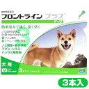 Flo_plus_dog_m3