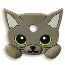 081022 catkey 09
