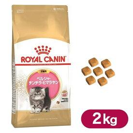 ロイヤルカナン キャットフード ペルシャ チンチラ ヒマラヤン 子猫用 2kg ■ 猫 ドライフード 仔猫用 キトン ROYAL CANIN