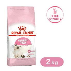 ロイヤルカナン キャットフード キトン 子猫用 2kg ■ 猫 ドライフード 仔猫用 ROYAL CANIN