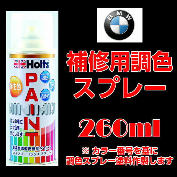 BMW 300(アルピンホワイト3)スプレーペイント Alpine White III