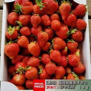 【SS時限定10%OFFクーポン配布中】[送料無料]福岡県久留米産 ジャム用イチゴ あまおう 1kg 農家直送 訳アリ イチゴバター 12月中旬から順次発送します。
