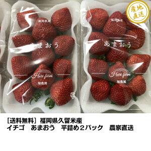 [送料無料]福岡県久留米産 イチゴあまおう 270g×2 農家直送ノーマルタイプの平詰めのパックになりますので輸送中、多少の痛みが出る可能性がありますのでご了承下さい。