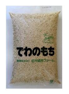 山形県産玄米もち米(でわのもち)2kg×2個セット【沖縄・別送料】【庄内協同ファーム】【05P03Dec16】