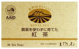 農薬を使わずに育てた紅茶(TB)(2.2g×20包)×20箱セット【20個買うと2個おまけ付・計22個】【沖縄・別送料】【菱和園】【05P03Dec16】