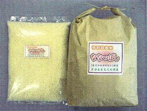 【松原米穀】 特別栽培米「北海道産・ななつぼし」白米 5kg【沖縄・別送料】【05P03Dec16】
