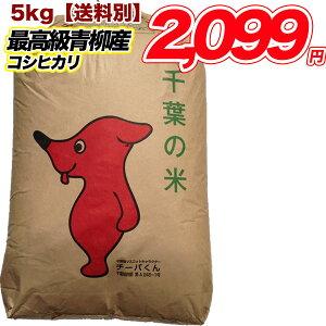 30年産 千葉県産 青柳産 コシヒカリ 5キロ 玄米 白米 精米 5kg こしひかり  送料無料  米  食品
