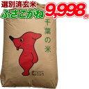 令和1年産 千葉県 ふさこがね 玄米 30kg コシヒカリを超えたうまさ 玄米食でも安心の選別済玄米30キロ 【送料無料】【…