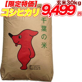 30年産 コシヒカリ 玄米 30kg千葉県産 精米(白米)無料【送料無料】