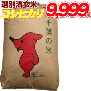 令和1年産 コシヒカリ 玄米 30kg千葉県産 精米(白米)無料【送料無料】
