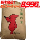 【新米入荷】令和1年産 ミルキークイーン 玄米 20kg 【送料無料】【精米無料】 精米(白米)発送可 【オススメ】【売れ…