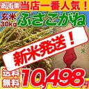 29年産新米入荷 千葉県 ふさこがね 玄米 30kg コシヒカリを超えたうまさ 玄米食でも安心の選別済玄米30キロ 【送料無…