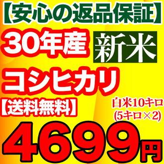 Koshihikari rice Chiba Prefecture Kurume-name water 10 kg (5 kg x 2 ) rice 10 kg 5 kg x 2