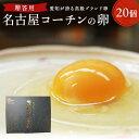 贈答用☆愛知が誇る高級ブランド卵☆名古屋コーチンの卵【20個入り(破卵保障2個含む)】食品/卵/鶏卵/高級卵/玉子/たま…