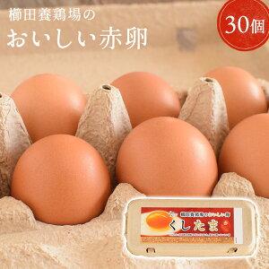 \臭みのないおいしい卵/くしたま 赤卵【30個入り(27個+破卵保障3個)】櫛田養鶏場のこだわりの自家配合飼料を食べてうまれた美味しい赤卵 卵 送料無料 玉子 たまご 食品 鶏卵 普段使い用
