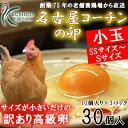 名古屋コーチンの卵小玉サイズ(SS〜Sサイズ)30個入り(内割れ保障3個含む) 【送料無料】食品/卵/鶏卵/30個/訳あり/高級