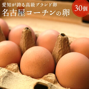 愛知が誇るブランド卵☆名古屋コーチンの卵【30個入り(破卵保障3個含む)】食品 卵 鶏卵 高級卵 玉子 たまご 贈答卵 ご家庭卵 送料無料 高級食材
