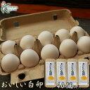 櫛田養鶏場のこだわりのエサを食べてうまれた美味しい白卵【40個入り(破卵保障4個含む)】送料無料!!鶏卵/食品/卵/た…
