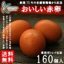 ☆業務用☆【愛知●尾張】櫛田養鶏場のおいしい赤卵 160個(140個+20個割れ保障)【送料無料】