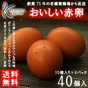 櫛田養鶏場のこだわりのエサを食べてうまれた美味しい赤卵【40個入り(内破卵保障4個含む)】送料無料!!卵/玉子/たま…