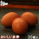 【普段使いにおススメ】櫛田養鶏場のおいしい赤卵【30個入り(破卵保障3個含む)】こだわりの餌を与え、臭みのない【お…