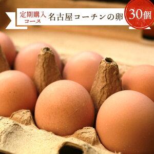【定期購入】愛知が誇るブランド卵☆名古屋コーチンの卵【30個入り(破卵保障3個含む)】食品 卵 鶏卵 高級卵 玉子 たまご 贈答卵 ご家庭卵 送料無料