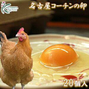 愛知が誇るブランド卵☆名古屋コーチンの卵【20個入り(18個+破卵保障2個)】食品 卵 鶏卵 高級卵 玉子 たまご ご家庭卵 普段使い用 送料無料