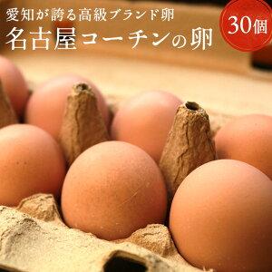 愛知が誇るブランド卵☆名古屋コーチンの卵【30個入り(破卵保障3個含む)】食品 卵 鶏卵 高級卵 玉子 たまご 贈答卵 ご家庭卵 送料無料