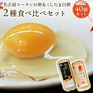【二種食べ比べセット】高級名古屋コーチンの卵(20個入り)+くしたま白卵(20個入り)【送料無料】合計40個入り 食品 卵 鶏卵 40個