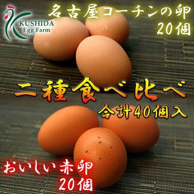 【愛知●尾張】二種食べ比べセット商品☆高級名古屋コーチンの卵(20個入り)+おいしい赤卵(20個入り)【送料無料】合計40個入り(内破卵保障4個含む) 食品/卵/鶏卵/玉子/たまご