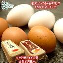 先着50セット!!【バージョンアップ中】1,000円ポッキリ!!おいしい赤卵10個入+おいしい白卵10個入【合計20個(18個+破卵保障2個)】おひとり様4セッ...
