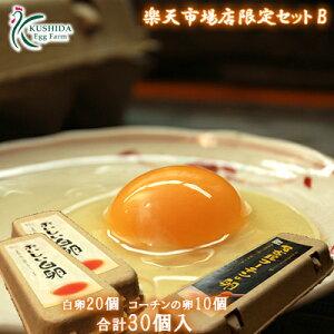 【楽天市場店限定セットB】高級名古屋コーチンの卵(10個入り)+おいしい白卵(20個入り)【合計30個入り(内破卵保障3個含む)】 食品/卵/鶏卵/30個/お得/お試し